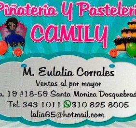 Piñateria Camily