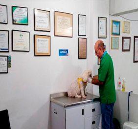 Casa Canina Centro Veterinario